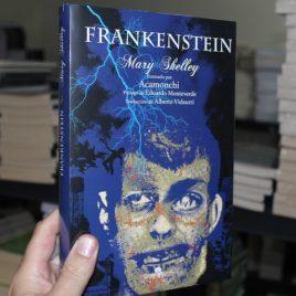 frankenstein … mary shelley … ilustrado por acamonchi … 280 páginas … pasta dura mirlo